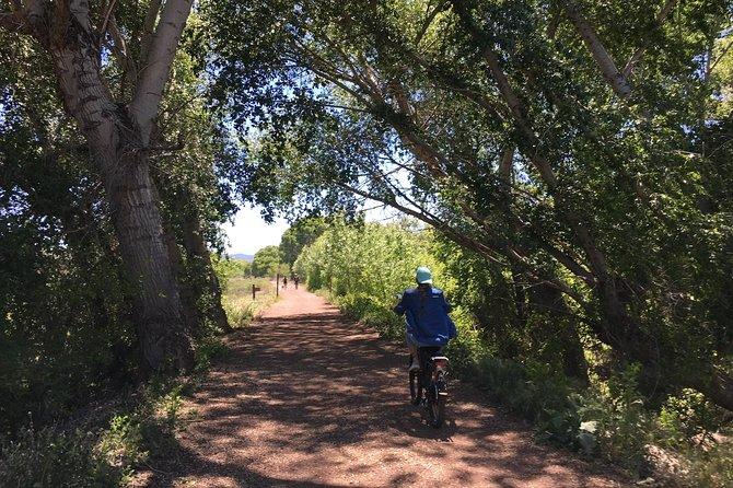 "2 Hour Ebike Ride at ""The Peavine Trail"" (POPULAR )"