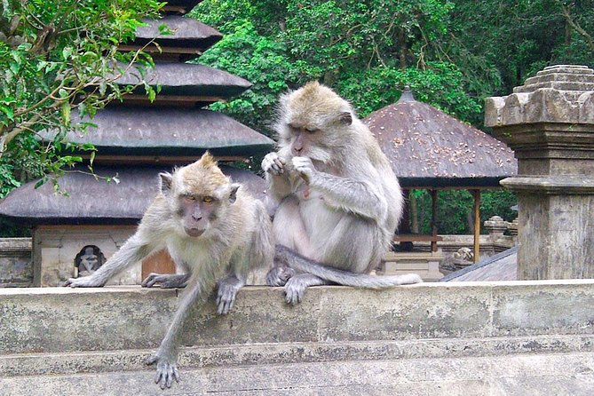 Bali Private Customized Day Tour