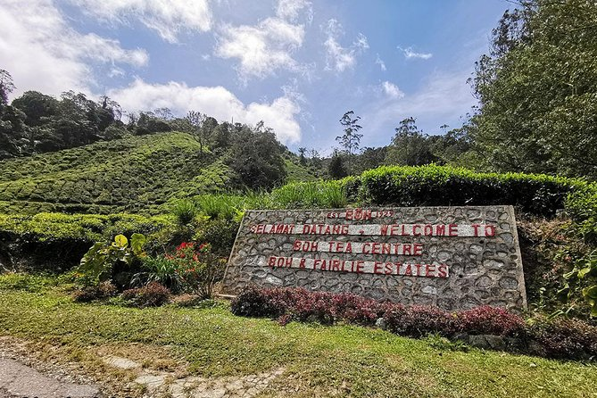 Cameron Highlands Full-Day Tour