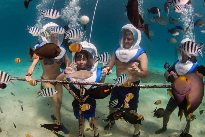 Castaway Bali Hai Cruises to Nusa Islands with Aquanauts Sea Walking