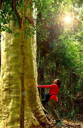 3 Day Murramarang Coast Journey from Batemans Bay with Meals and Villa Accom
