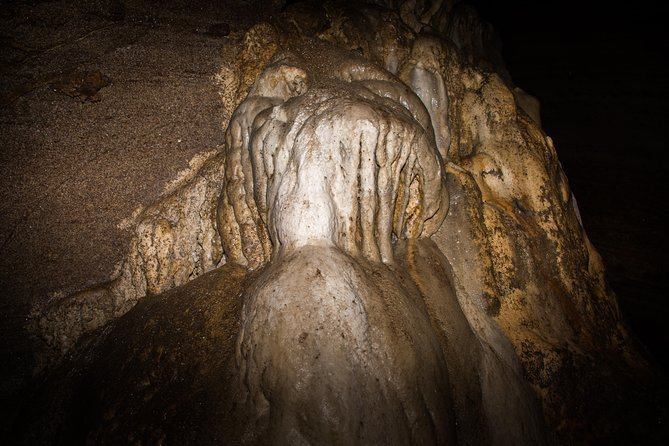 Explore Pannila Cave from Colombo (Private Day Tour) photo 6