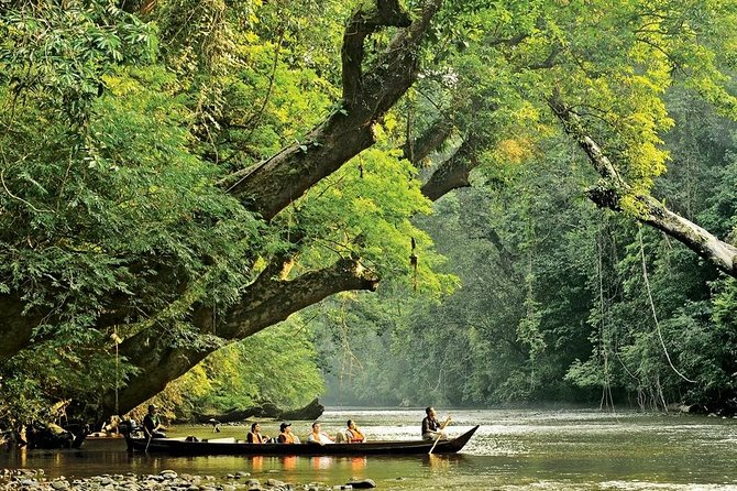 4D3N: Unesco Batu Caves, Cameron Highlands and Taman Negara Rainforest Tour