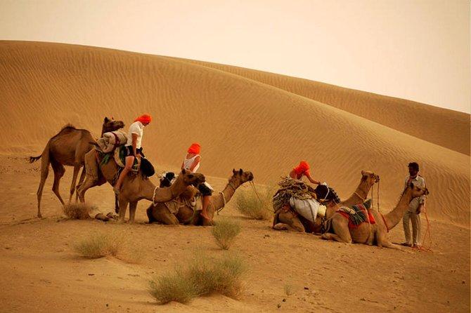 Overnight Camel Safari at Non-Touristic Route