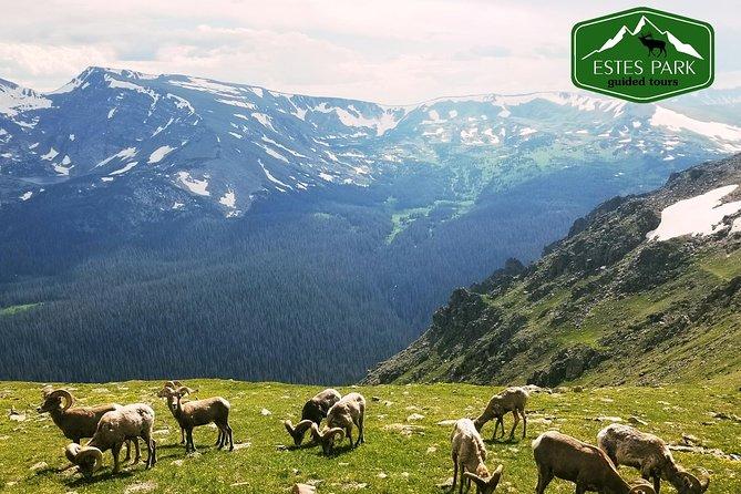 Rocky Mountain National Park Tour - Grand Lake Tour - Estes Park Guided Tours