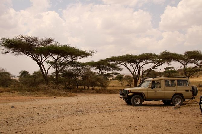 1 day Saadani National Park