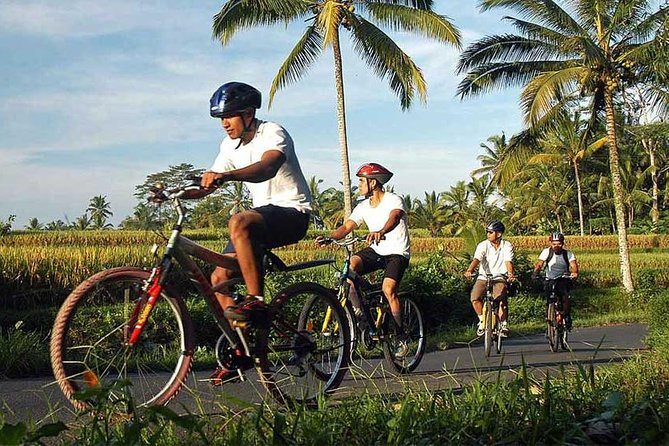 Bali Countryside Cycling and Tanah Lot Tour