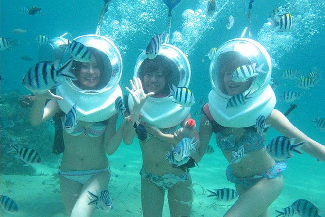 Bali Sea Walker Experience Including Hotel Transfers