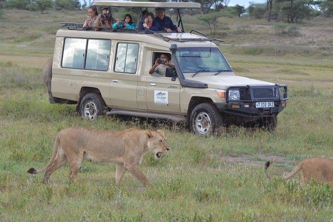3 Nights / 4 Days Safari Suitable all year around