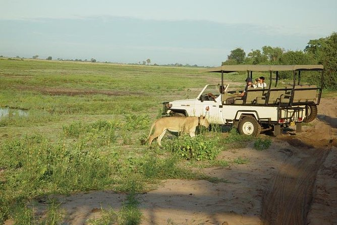 Chobe National Park Full Day Trip
