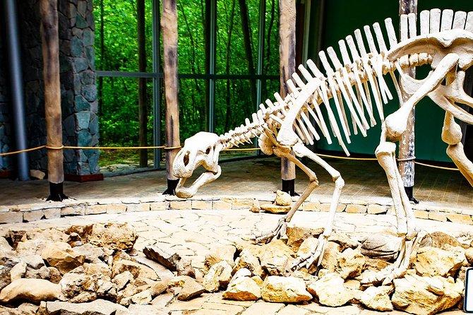 Sataplia grot & dinosaurus voetafdrukken. Privé familietour vanuit Koetaisi