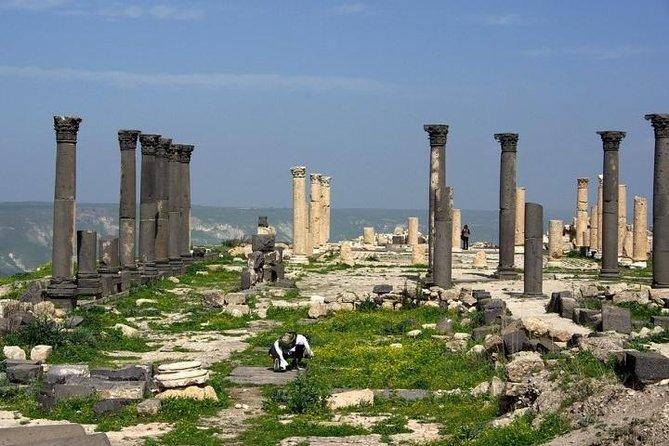 Umm Qais, Pella, Ajloun & Jerash Day Trip from Amman, Madaba, Airport, Dead Sea