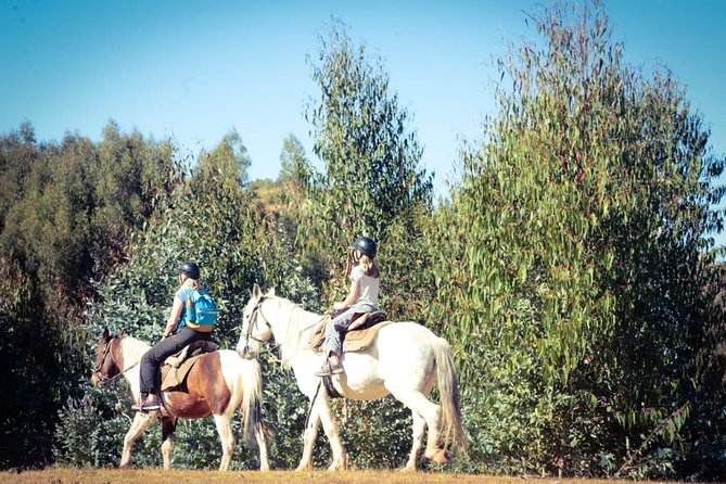 HORSE RIDING FULL DAY ( full service)