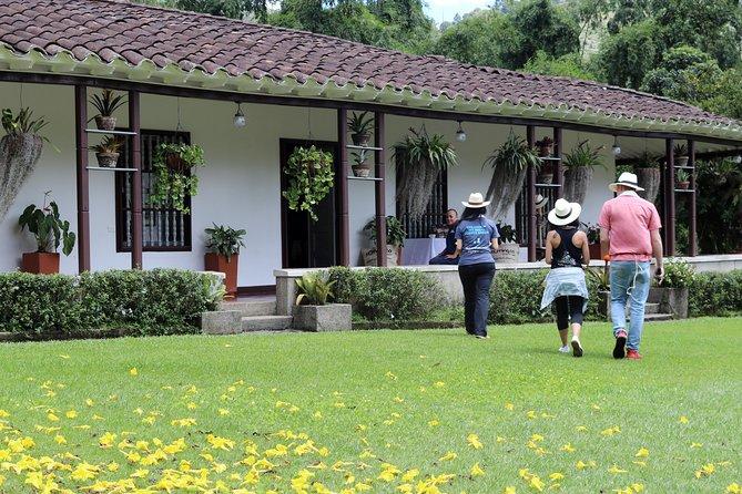 Medellín Hands-on Coffee Tour