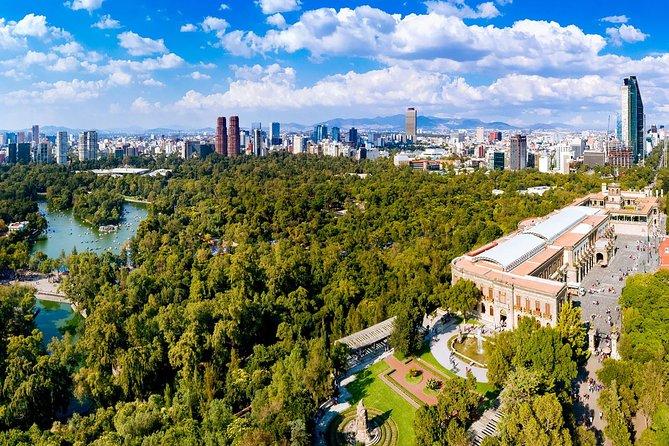 Chapultepec Castle and Park Walking Tour plus Picnic