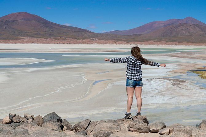 Puna Salt Flats - Full Day Tour - San Pedro de Atacama - Must Visit
