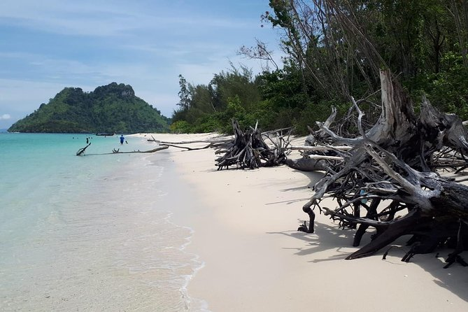 Krabi 5 Islands & Yao Island Speedboat Tour from Phuket photo 15