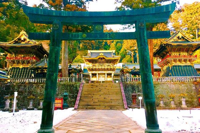 Private tour: Chartered car from Tokyo to Nikko, Toshogu, Edo Wonderland etc