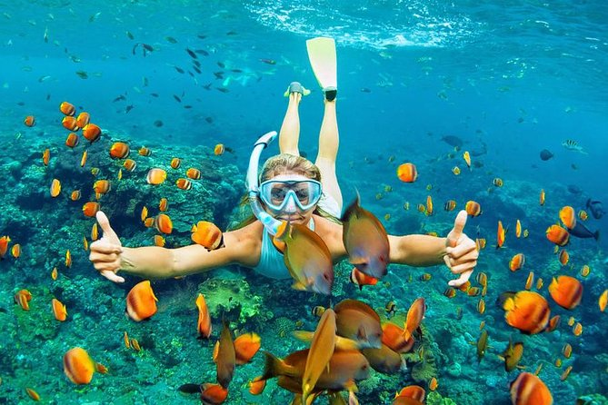 Bali Snorkeling Trip at Blue Lagoon With Transfers