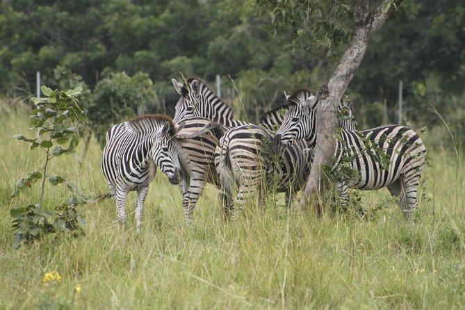 Discover Nature at Shai Hills