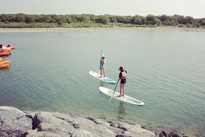 Abu Dhabi Mangroves Stand-Up Paddle Board Guided Tour photo 6
