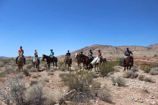 Sunset Horseback Riding Tour