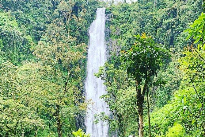Materuni falls biggest falls under the slope of mount Kilimanjaro.