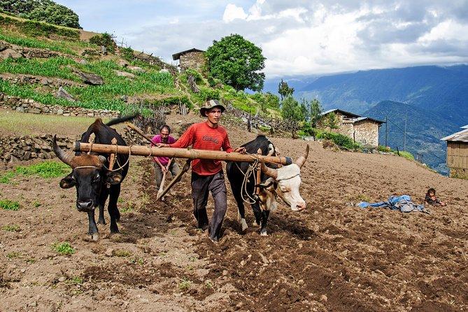Experience Rural Bhutan Private Tour