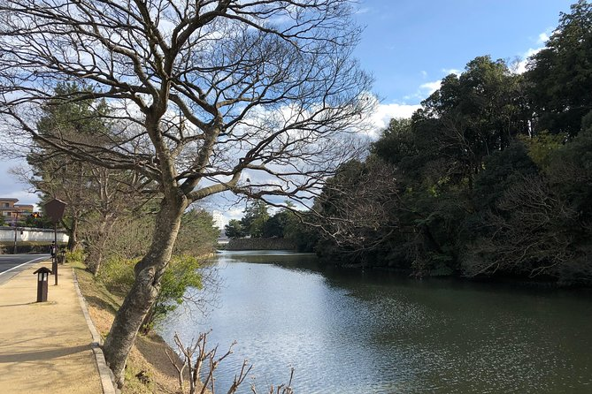 Matsue Highlights, a Private Tour from Sakaiminato photo 4