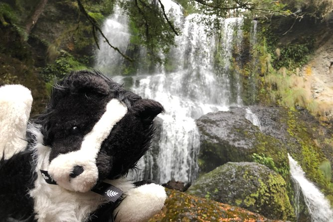 Waterfalls Guided Tour