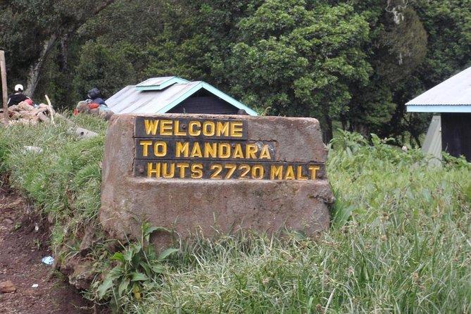 Kilimanjaro Mountain day trip hiking
