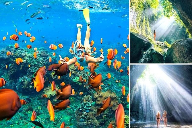 Blue Lagoon Snorkeling - Cave Waterfall - And More - All Included + FREE Wi-Fi