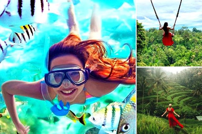 Blue Lagoon Snorkeling - Jungle Swing - Ubud - All Included + FREE Wi-Fi