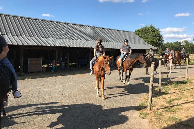 Horse riding lessons / recovery 1 H