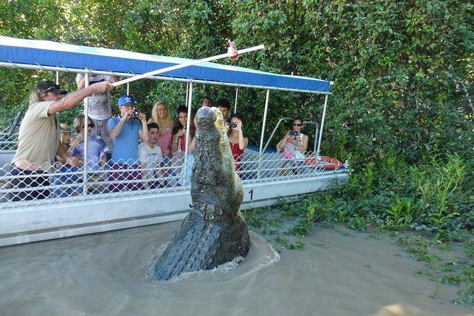 Jumping Crocodile Experience