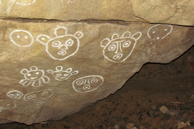 Ultimate Private Taíno Petroglyph Experience photo 4