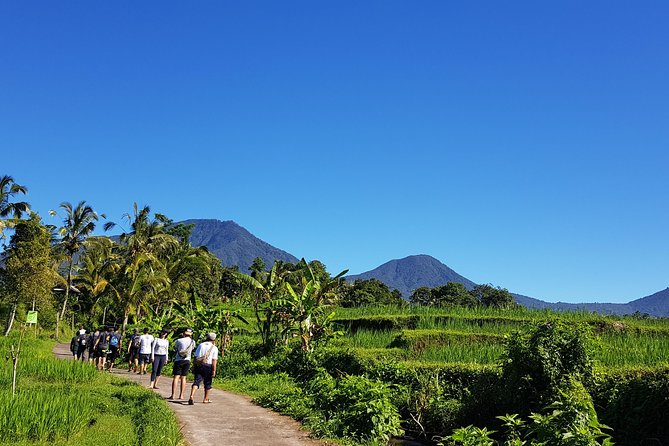 Experience the Authentic & Natural Beauty of Bali
