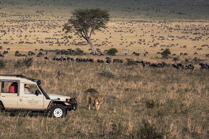 8 Days - Kenya Wildlife & Zanzibar Beach Vacation
