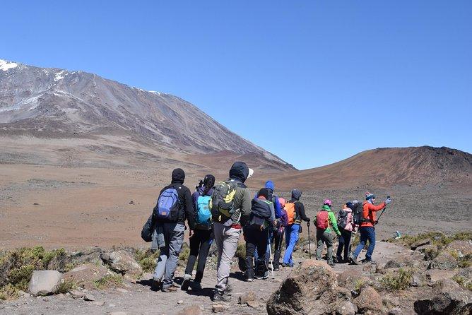 6 day Mount Kilimanjaro Trek- Marangu route