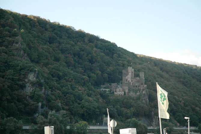 Heidelberg and Rhine Valley Day Trip from Frankfurt Incl Wine Tasting and Dinner photo 21