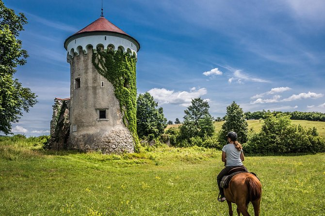 Horseriding in the beautiful nature