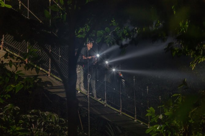 Nocturnal Walk in the Hanging Bridges