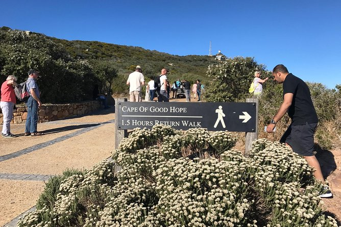 Full Day Cape Peninsula Scenic Tour