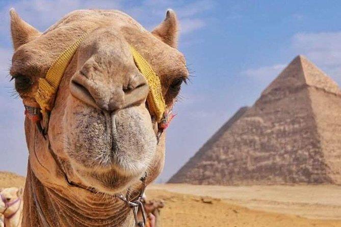 Sunset Safari at the Pyramids (Camel ride & BBQ)