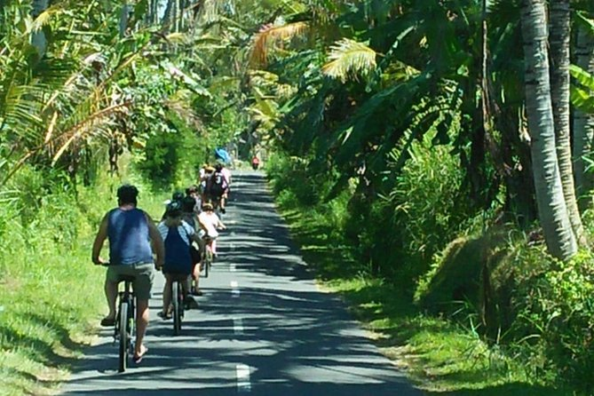 Bintang Downhill Cycling Tours photo 4