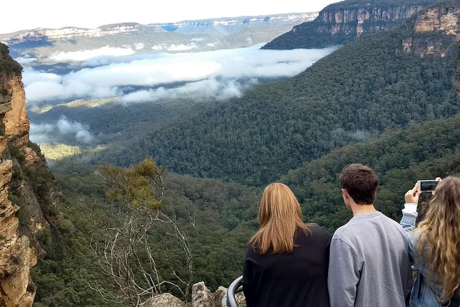 Blue Mountains Private Tour inc. wild kangaroos and ferry ride