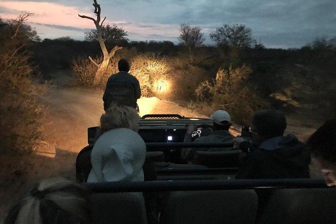 Night Drive in Yala National Park Buffer Zone