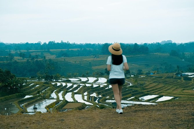 Fascinating UNESCO Site Tour: Lake Temple, Rice Terrace & Best Sunset of Bali