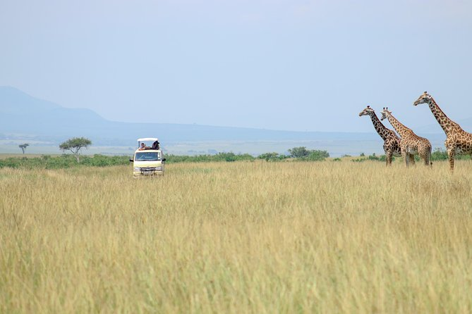 Masai Mara 3 Days 2 Nights Safari