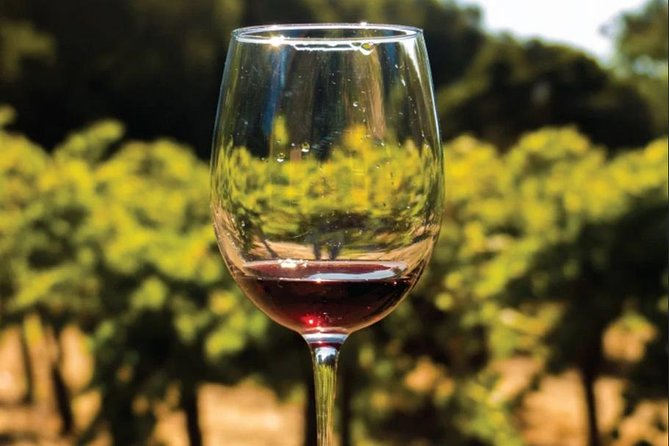 Wine Tasting: Full-Day Wine Tour in Kakheti